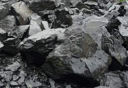 Шунгит – природный сорбент