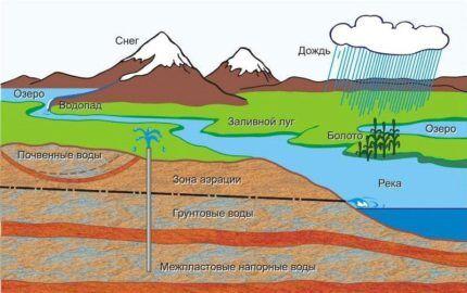 Влияние водоёма на качество грунтовых вод