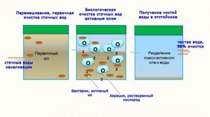 Принцип действия биологической очистки стоков с применением биопрепаратов
