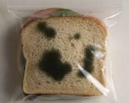 Черная плесень на хлебе