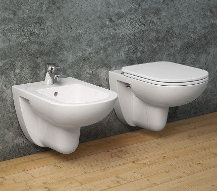 Bidet and WC in the toilet