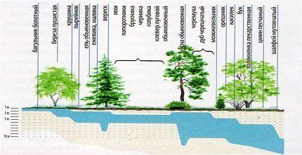 Определение глубины подземных вод