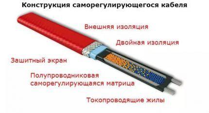 Схема саморегулирующего кабеля