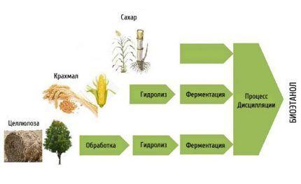 Главное в составе биотоплива – спирт