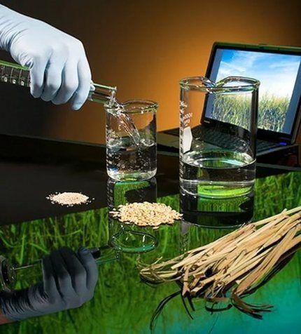 Безопасность биоэтанола