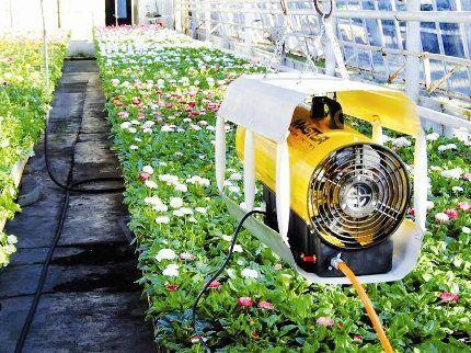 Термовентилятор в теплице