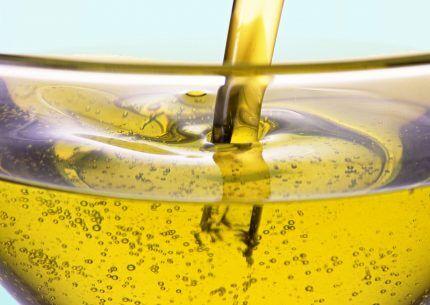 Bio oil as a fuel for the gun