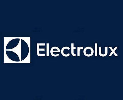 Логотип компании Электролюкс