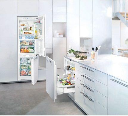 Многообразие бытовых холодильников