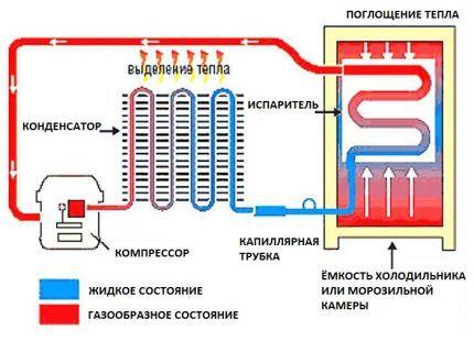 Схема устройства компрессорного холодильника