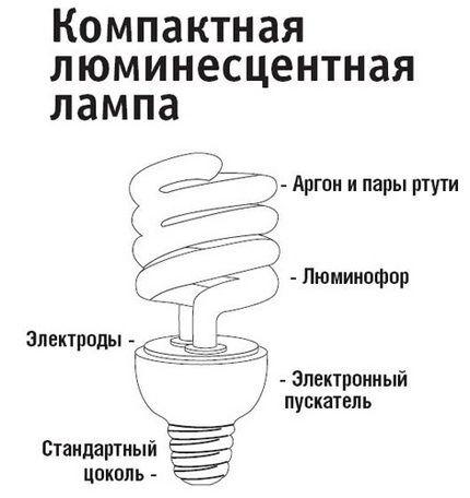 Устройство компактных люминесцентных ламп