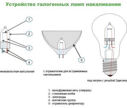 Устройство галогеновой лампы