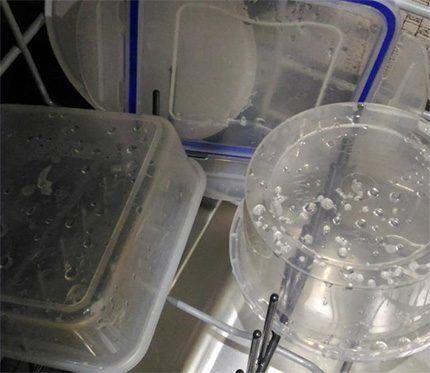 Капли воды на посуде после сушки