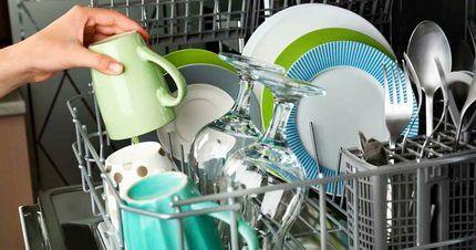 Рабочая камера посудомойки