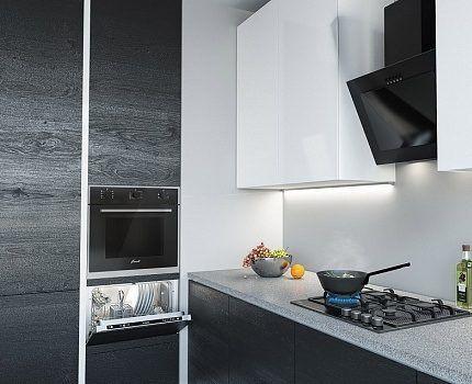 Модель посудомойки бренда Флавиа
