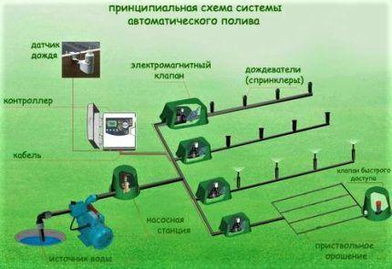 Схема автополива огорода
