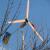 За сколько можно продать самодельный ветряк?