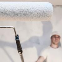 Надо ли грунтовать стены перед шпаклевкой: порядок проведения работ + советы профессионалов