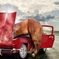 Перевод киловатт в лошадиные силы: сколько ЛС в одном кВт + принципы и способы вычислений