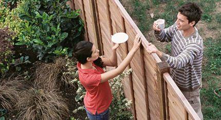 Общение с соседями по даче