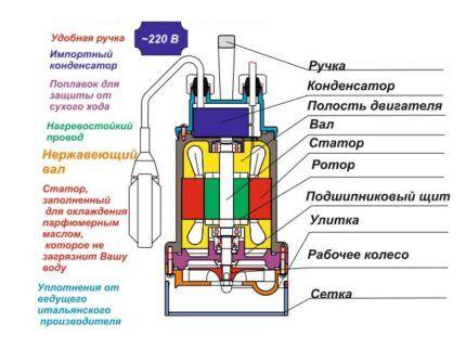 Схема устройства центробежного насоса Гном