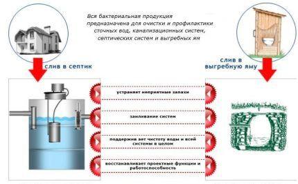 Бактерии для септиков и вынгебных ям