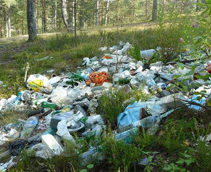 Выброс мусора в водоохранной зоне