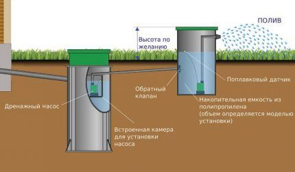 Использование очищенной воды в поливе