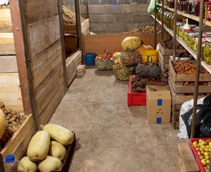 Хранение овощей в подвале