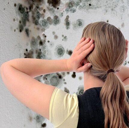 Чем обработать стены от грибка и плесени перед поклейкой обоев