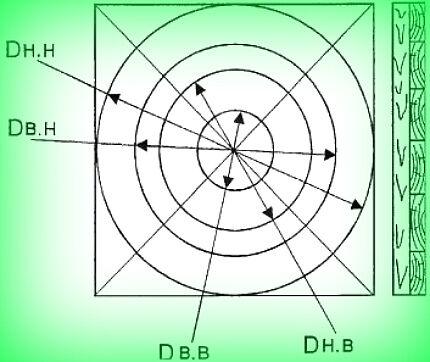 Разметка формы