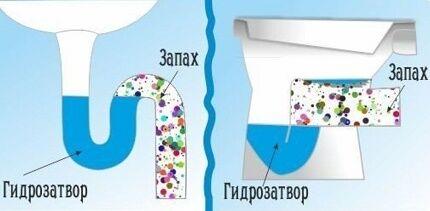 Гидрозатвор в колене-сифоне