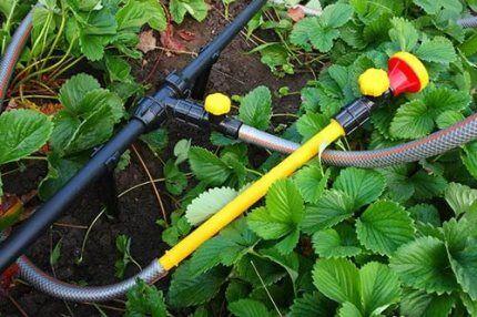 Трубы для дачи или счастливая четверка для вашего трубопровода