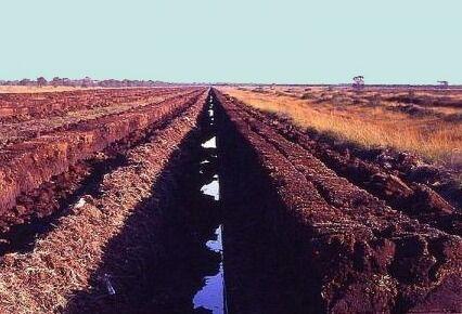 Добыча торфа на болотах