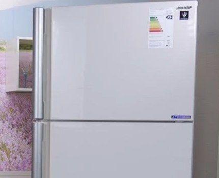Холодильник Sharp SJ-XE55PMBE