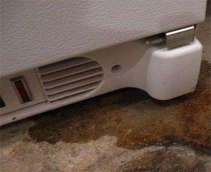 Вода под холодильником