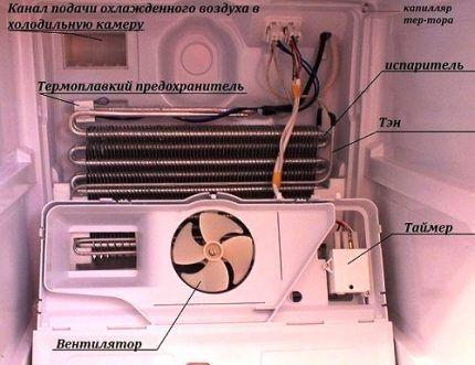 Внутреннее устройство холодильной камеры