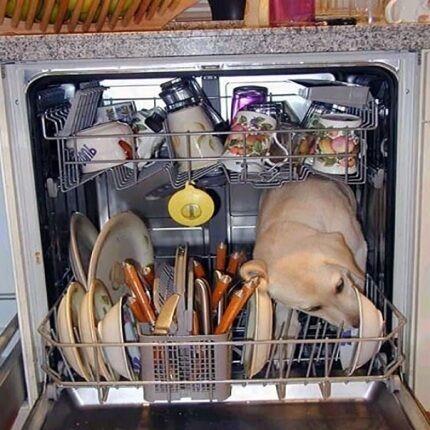 Чем лучше мыть в посудомоечной машине