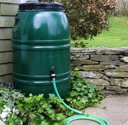 Зеленая бочка для воды в саду