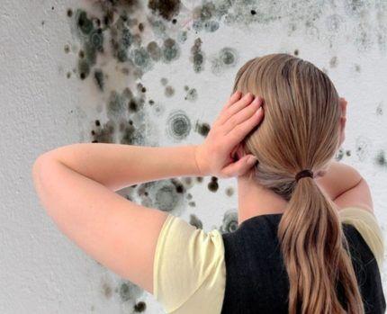 Чем удалить грибок и плесень между плитками на стене в ванной: эффективные средства от грибка и варианты, как избавиться от плесени в домашних условиях