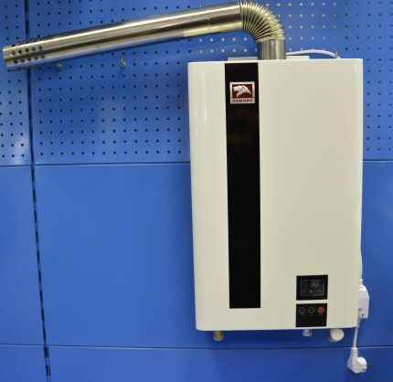 Газовый водонагреватель висит на стене