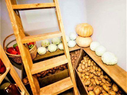 Свежие овощи в подвале