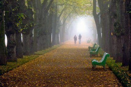 Прогулки после дождя