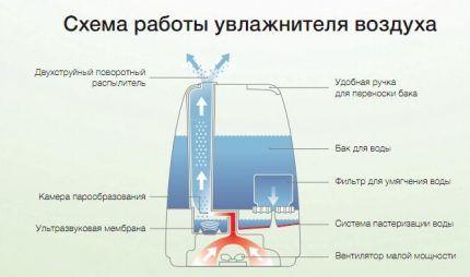 Принцип работы УЗ увлажнителя воздуха