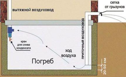 Схема устройства вентиляции в подвале