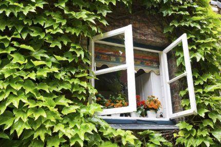Естественная вентиляция через открытое окно