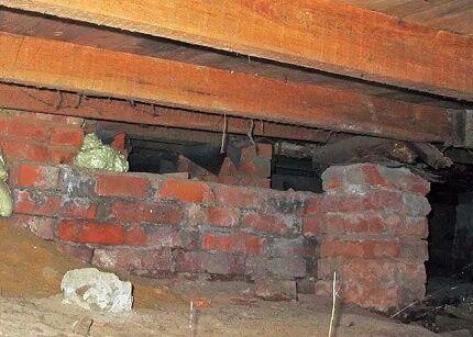 Появление грибка на строительных конструкциях