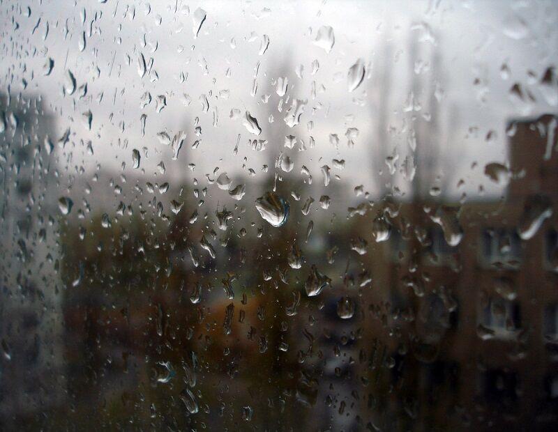 Чем определяют влажность воздуха