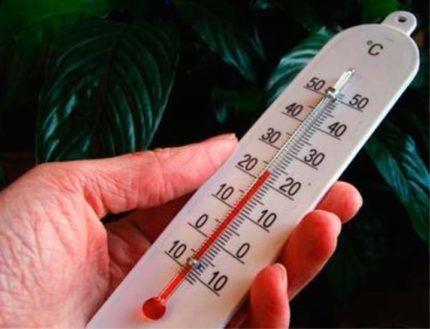Проверка температуры в помещении