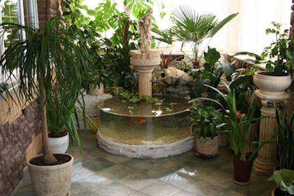 Комнатные фонтаны и растения